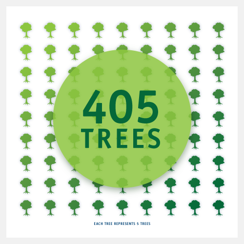 Rule29 saved 405 trees in 2011 with post-consumer recycled paper